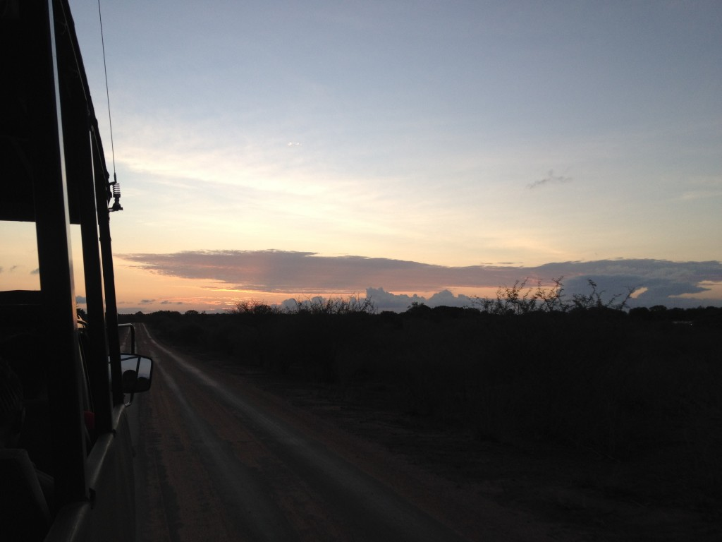 Sunset in Kruger National Park.